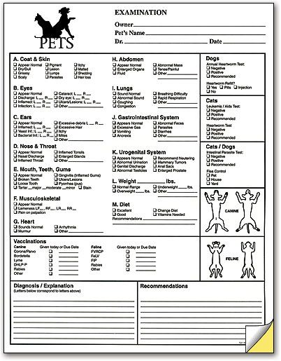 Per vaginal examination pdf notes
