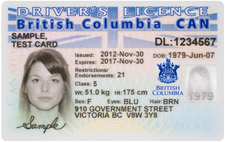 Icbc how to change license on driving license